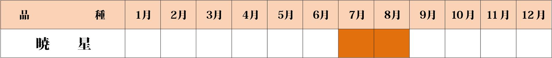 暁星カレンダー