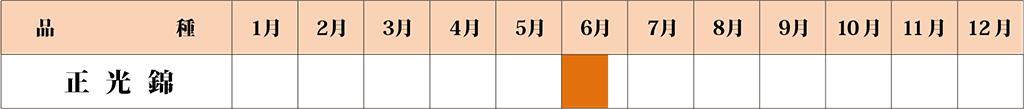 正光錦 カレンダー