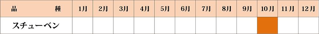 スチューベン カレンダー