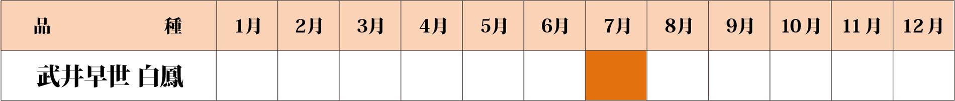 武井早世白鳳カレンダー