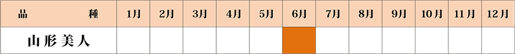 山形美人 カレンダー